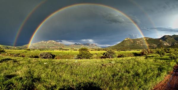 rainbow600
